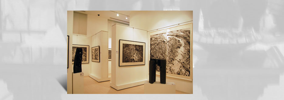 exhibition-2008-wucius-wong
