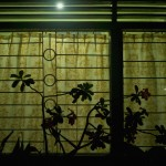 Yellow Patterned Curtain,2010,59.5x85x6.5cm,Archival digital pigment print on transparent film mounted in light box