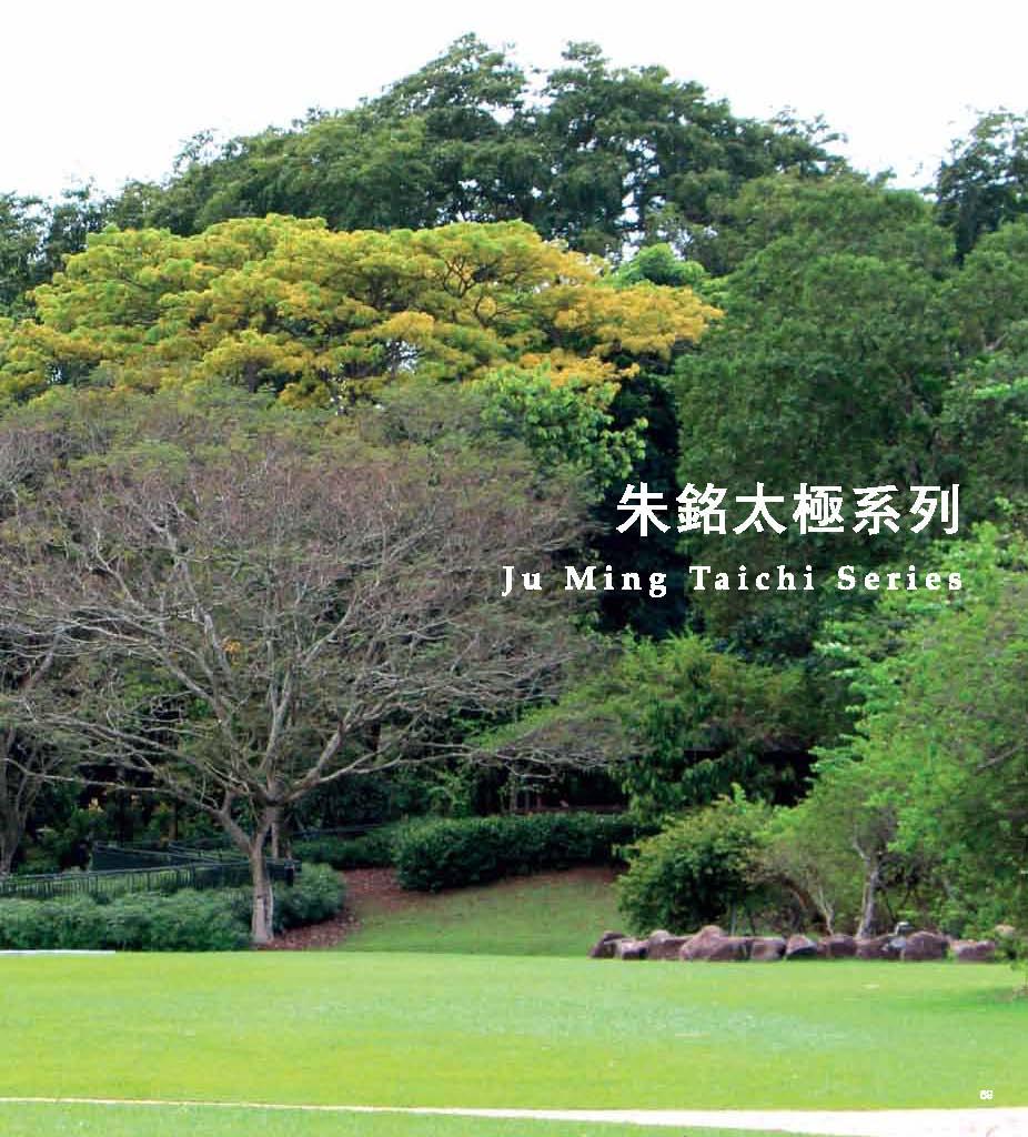 Ju Ming Catalogue_Page_071